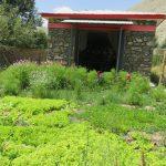 Nutrition et jardinage